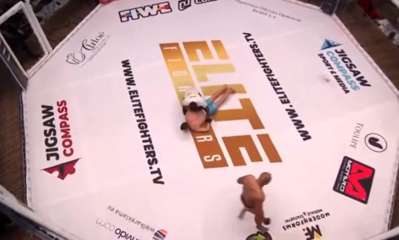 Organizacja Elite Fighters zapowiada pojedynek kobiety z mężczyzną oraz walkę każdy na każdego